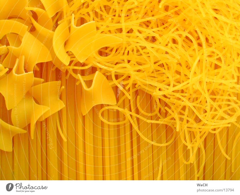 Pasta 2 Nutrition Noodles Spaghetti Cooking fravals Colour photo Studio shot Close-up Detail Macro (Extreme close-up)