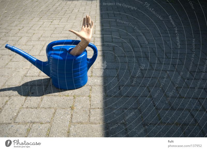 Hand Blue Arm Farm Hide Watering can
