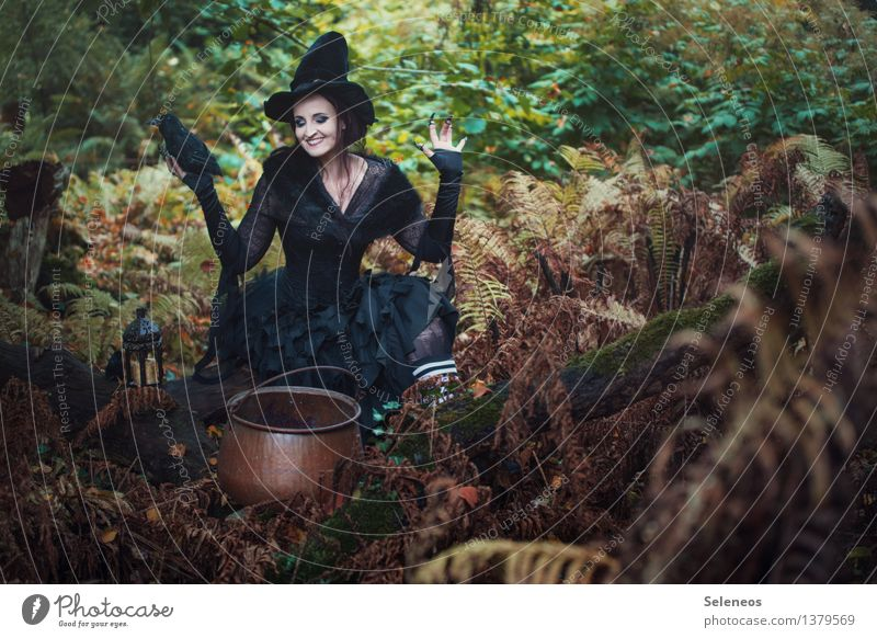 and the day after tomorrow.... Carnival Hallowe'en Human being Feminine Woman Adults 1 Environment Nature Autumn Bushes Fern Forest Hat Raven birds Creepy