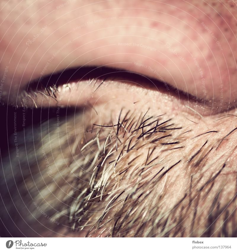 Man Hair and hairstyles Air Nose Soft Part Facial hair Hollow Odor Breathe Hard Rough Moustache Parts of body Nostril