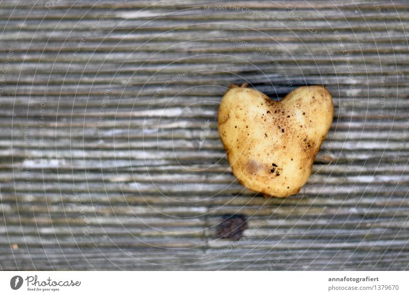 Potato with heart Nature Wood Love Authentic Kitsch Brown Friendship Together Attachment Potatoes Heart Colour photo Close-up Day Contrast
