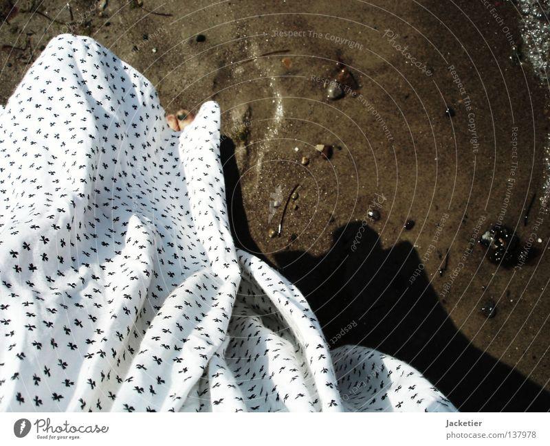 Woman Water White Ocean Movement Feet Mussel Toes Algae Wismar