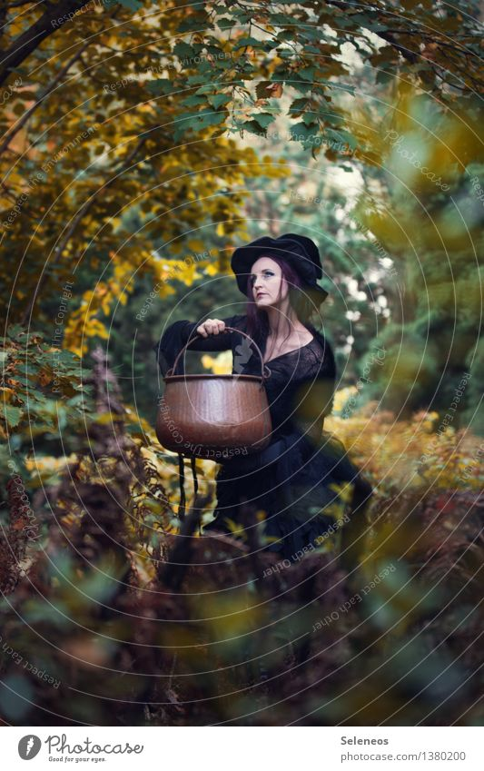 I wonder what she will brew Carnival Hallowe'en Human being Feminine Woman Adults 1 Environment Nature Autumn Bushes Forest Hat Boiler witch's cauldron Creepy