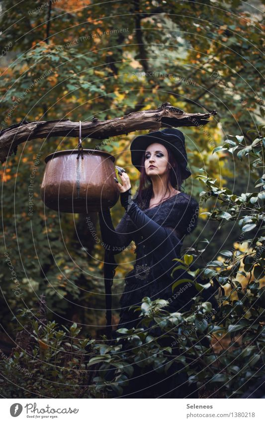 Human being Woman Nature Tree Forest Adults Environment Autumn Feminine Nutrition Cooking & Baking Branch Hat Carnival costume Witch Subculture