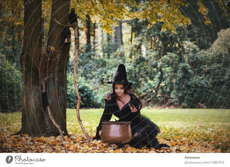 All organic! Carnival Hallowe'en Human being Feminine Woman Adults 1 Environment Nature Autumn Beautiful weather Tree Grass Autumn leaves Leaf Meadow Forest
