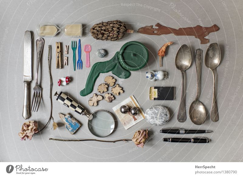 Living or residing Candle Rose Still Life Accumulation Bank note Match Cutlery Classification Magnifying glass Pebble Odds and ends Clothes peg Snail shell