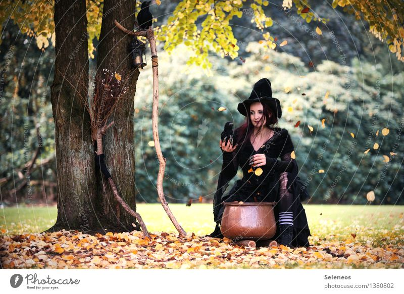 Halloween is coming Hallowe'en Human being Feminine Woman Adults 1 Autumn Beautiful weather Tree Leaf Garden Park Forest Hat Witch Witch's broom Boiler