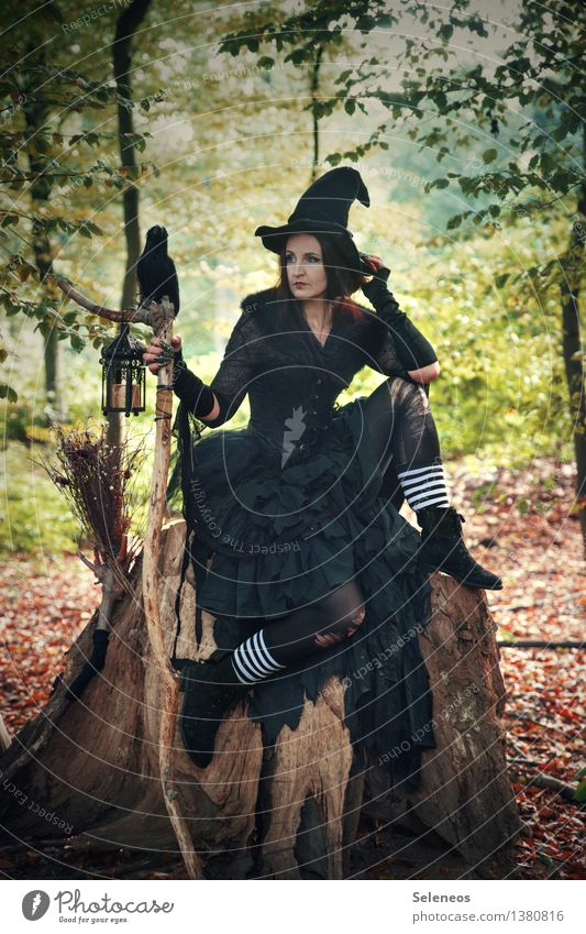 Halloween season Feasts & Celebrations Hallowe'en Human being Feminine Woman Adults 1 Subculture Rockabilly Event Autumn Tree Forest Hat Raven birds Creepy