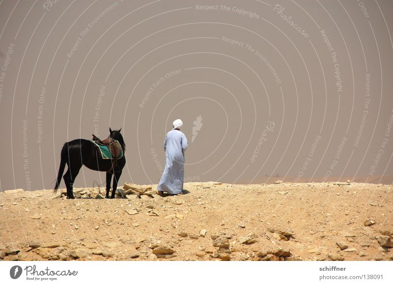 Separate ways Badlands Divide Loneliness Bedouin Horse Egypt Africa Desert Sand part leave sb. alone away into the unknown lag desert man desert horse