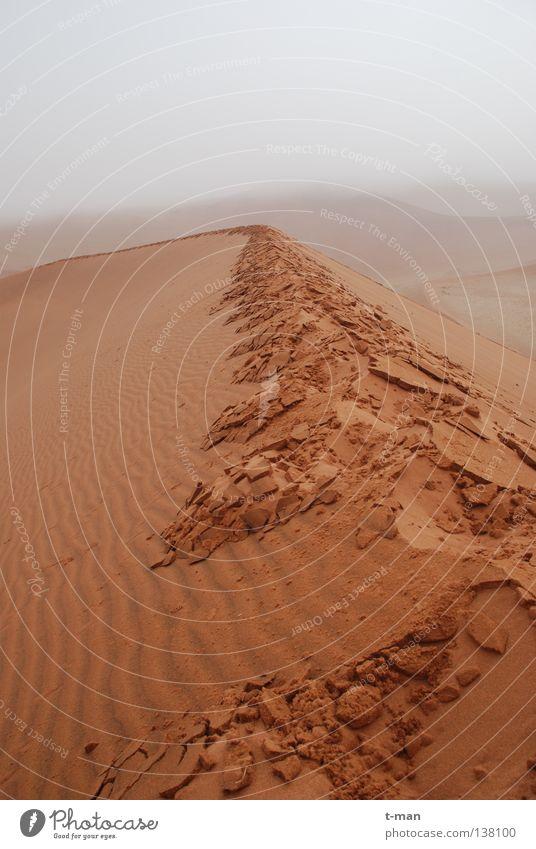 wet desert Namibia Footprint Africa Morning Loneliness Calm Fog Earth Sand Desert Dawn
