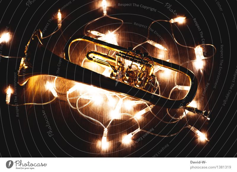 Human being Christmas & Advent Beautiful Joy Dark Emotions Art Feasts & Celebrations Moody Illuminate Music Gold Gift Culture Restaurant Concert