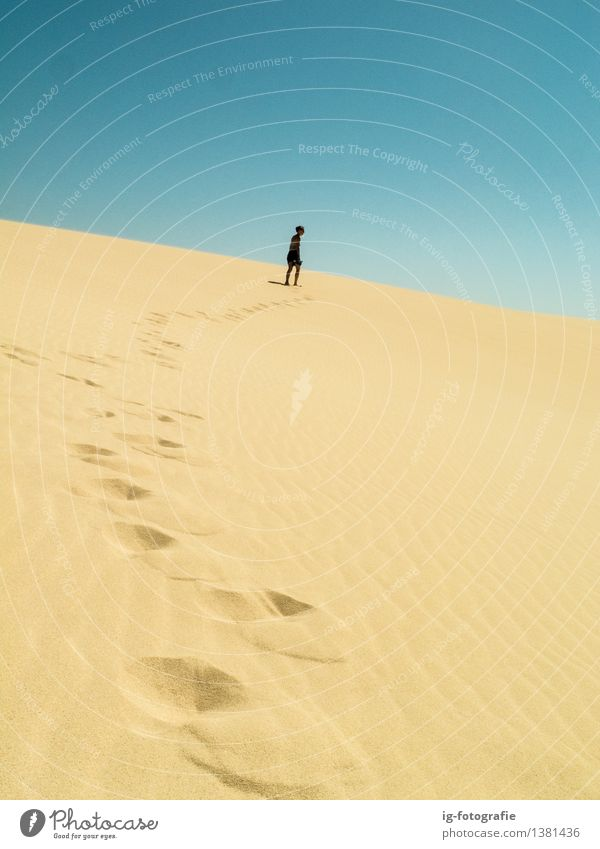 long way - footprints on sand dune in the desert - a Royalty Free
