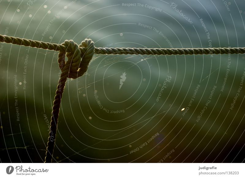 Water Colour Watercraft Rope Harbour Craft (trade) Hang Muddled Knot Fastening Evening sun Complicated Anchoring ground