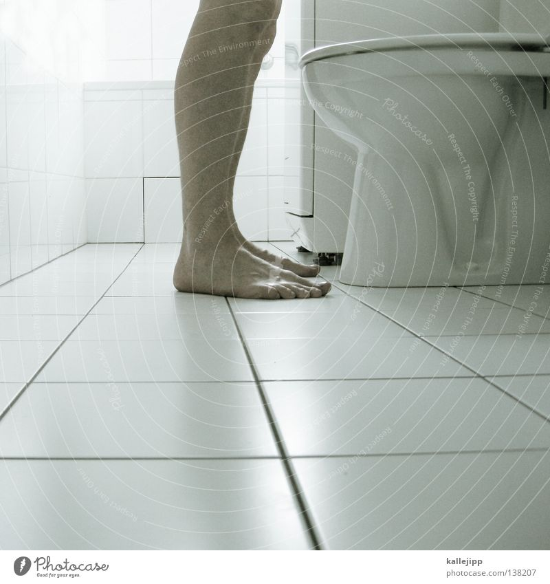 Human being Man White Legs Feet Masculine Drops of water Stand Cleaning Clean Bathroom Tile Toilet Toilet Make Mushroom