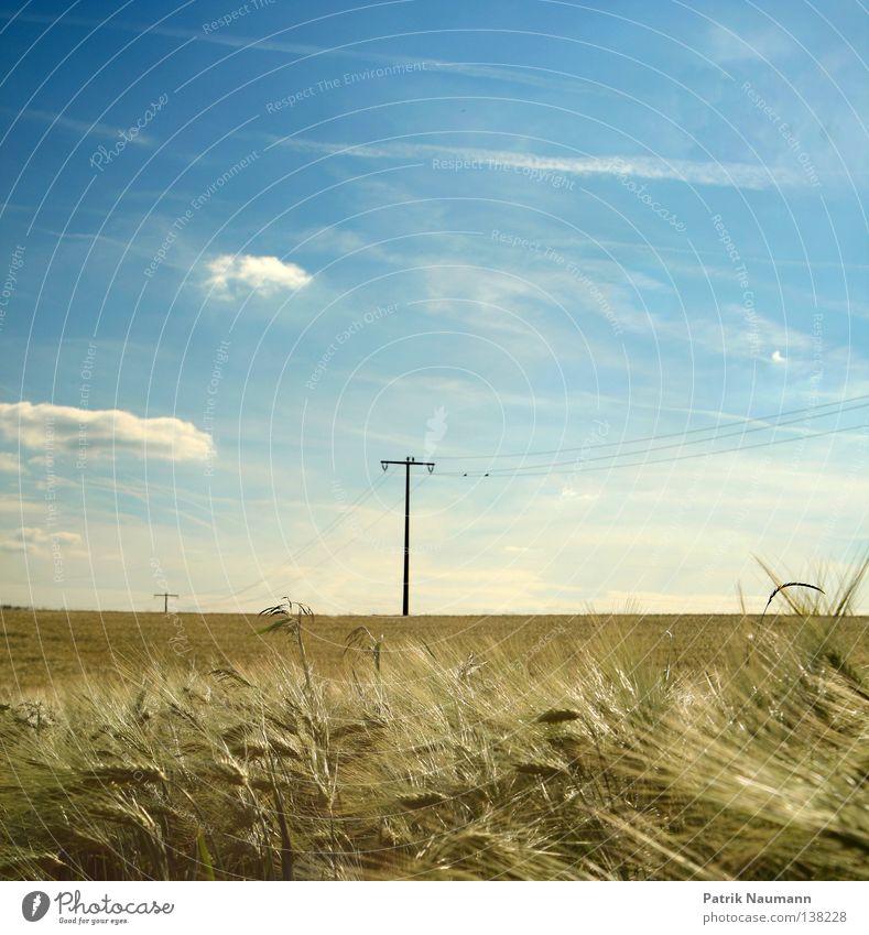 Sky Nature Blue Green Summer White Landscape Clouds Grass Technology Electricity Agriculture Desire Electricity pylon Rural Pollen
