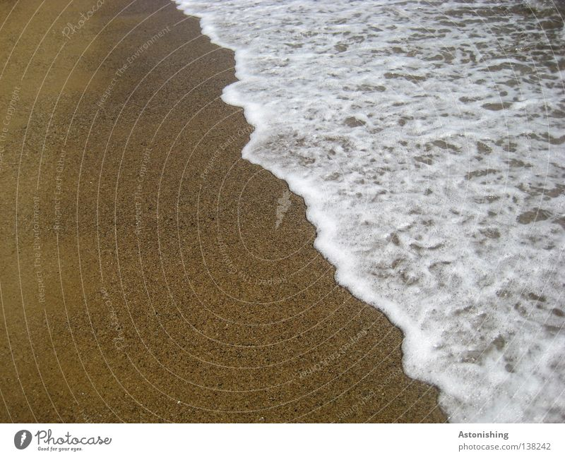 sea level Vacation & Travel Beach Ocean Waves Sand Water Line White Sea water Colour photo Sandy beach White crest Water line Deserted Copy Space left