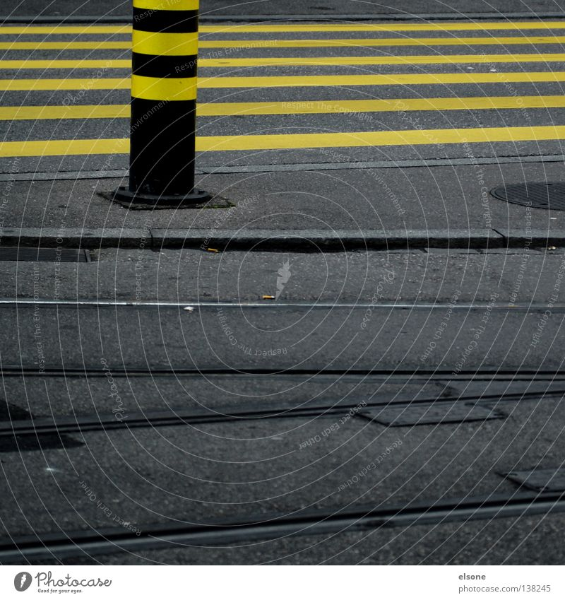 monotony Yellow Stripe Zebra Curbside Direction Urban traffic regulations Road traffic Town Turn off Cycle path Empty Crossroads Lane markings Gray Asphalt