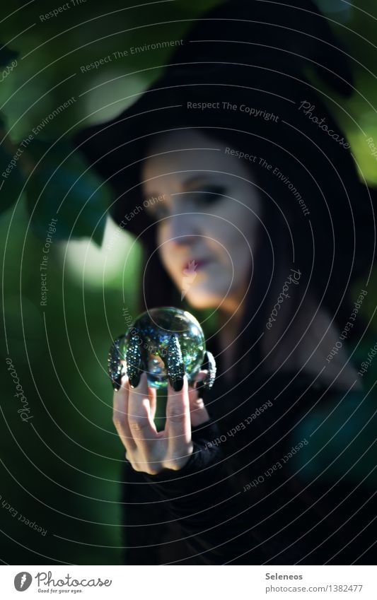 dreams of the future Carnival Hallowe'en Human being Feminine Hand Fingers Fingernail 1 Forest Hat Crystal ball Observe Advice To hold on Fortune-telling
