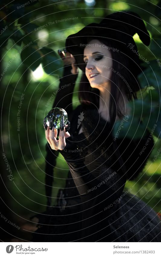 future outlook Carnival Hallowe'en Feminine Woman Adults 1 Human being Forest Hat Dark Future Witch Carnival costume Fortune-telling Glass ball Colour photo