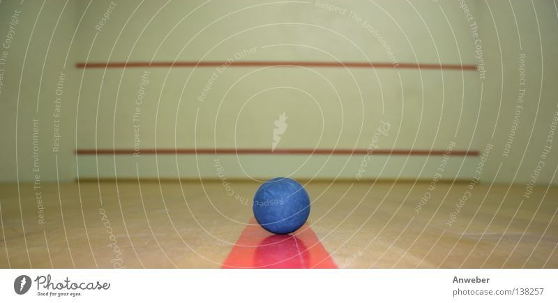 Squashball in an empty Spashcourt Gymnasium Playing Sporting event Background picture Things Red Ball sports Rectangle Building Interior shot Wall (building)