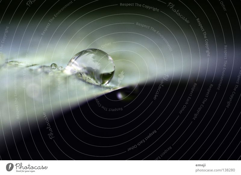 Blue Beautiful Green Water Joy Dark Black Cold Rain Glittering Glass Drops of water Wet Cool (slang) Round Clarity
