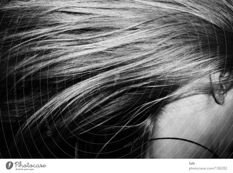 in a hurry Hair and hairstyles Wind Long-haired Moody Dependability Prompt Stress Time Blow Strand of hair Walking Running Timeless Nape Grow hazy Haste Head