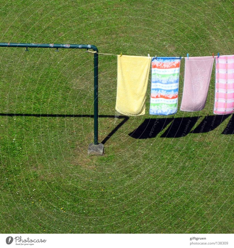 washing day Laundry Washing day Clothesline Holder Clothes peg Hang Meadow Grass Dry Fabric softener Detergent Towel Household Work and employment Multicoloured