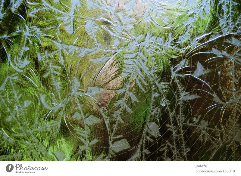Nature Green Tree Plant Flower Park Art Background picture Glass Dirty Decoration Bathroom Craft (trade) Broken Transparent Muddled