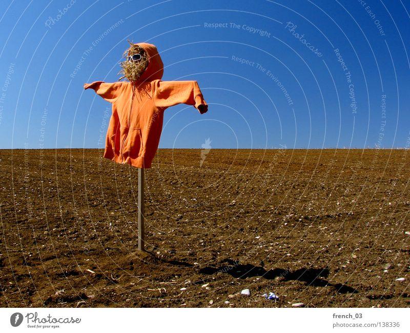Sky Nature Green Blue Clouds Loneliness Meadow Freedom Landscape Grass Wood Line Weather Orange Bird Fear