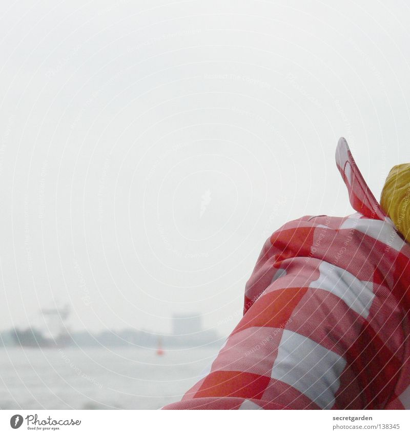 HH08.1 - not small checked Coat Jacket Clothing Vantage point Fog Scarf Yellow Red Checkered White Cold Comfortless Horizon Collar Wind Posture Pattern Brave