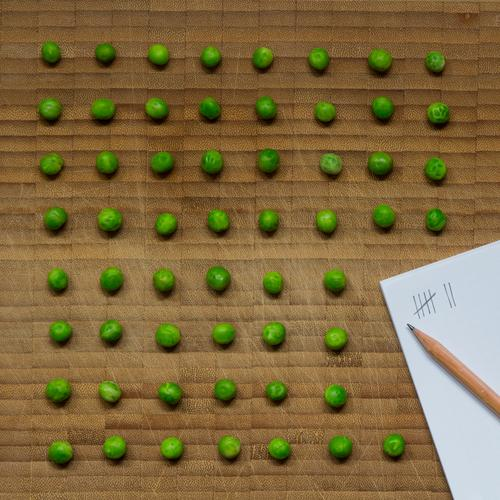 Pea counter - lined up peas on a wooden background with writing pad and pencil Food Vegetable Peas Nutrition Vegetarian diet Diet Healthy Workplace Plant Paper