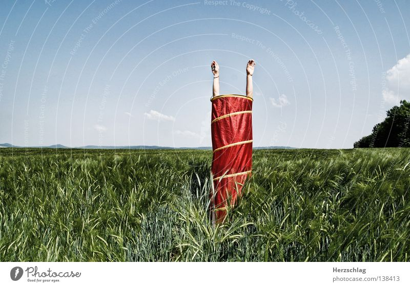 Hand Green Tree Red Summer Calm Loneliness Far-off places 2 Funny Field Arm Tall 3 Stand Round