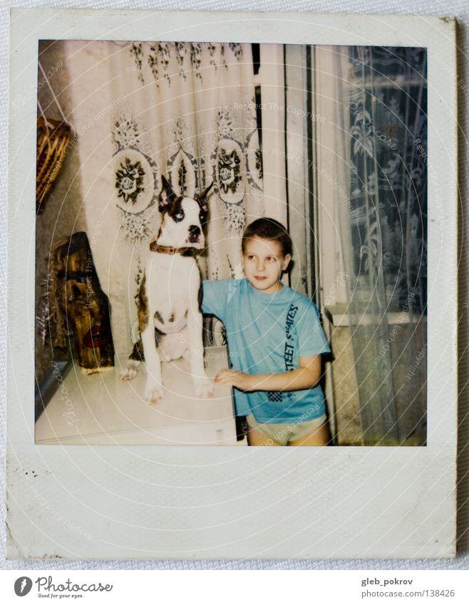 Polaroid part II Portrait photograph Human being Retro Mammal Living room dog home boy dreams russia half lengh 6x6 window Wall (barrier)