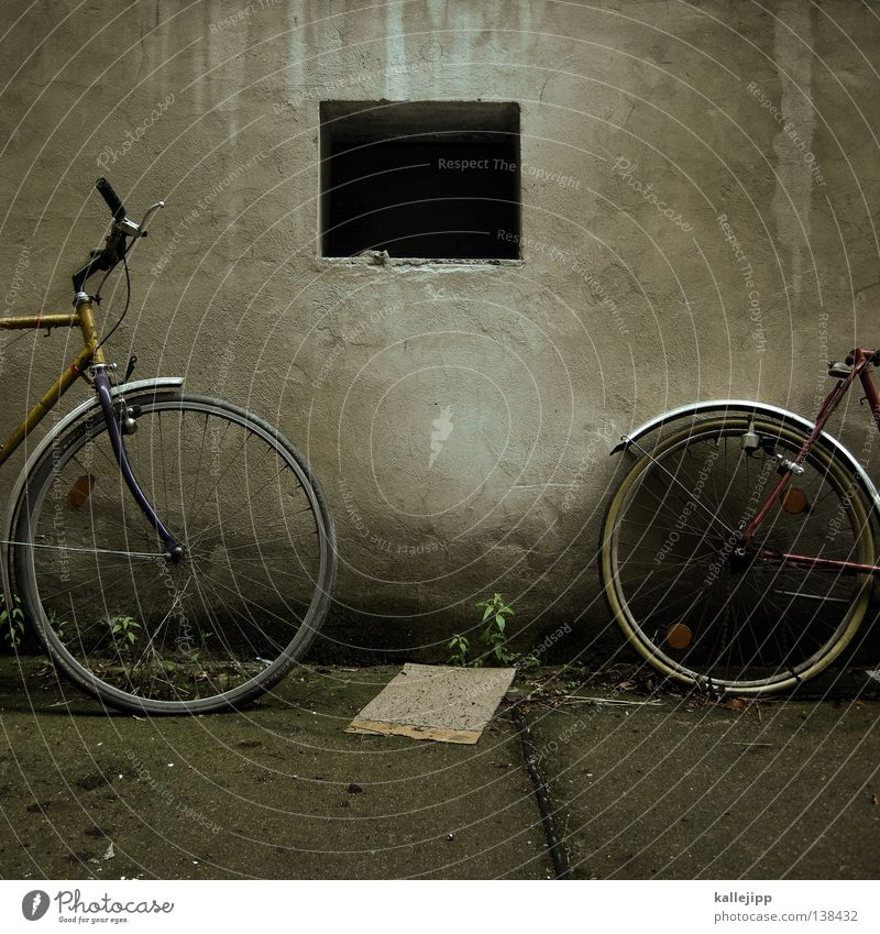 Green Graffiti Wall (building) Grass Movement Wall (barrier) Lamp Bicycle Transport Academic studies Safety Farm Newspaper Steel Wheel Watchfulness