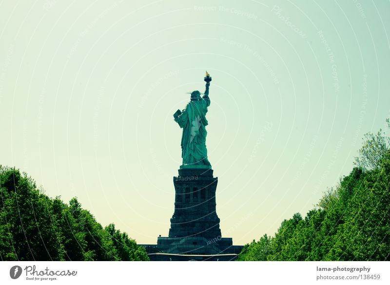 Sky Blue Green Tree Architecture Freedom Art Tall Perspective Symbols and metaphors USA Vantage point Peace Historic Monument Lady