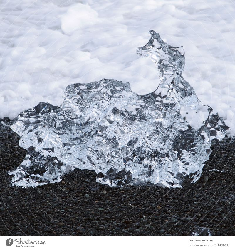 crystal ice Nature Elements Earth Water Beach Ocean North Atlantic Lava beach Sand Crystal Esthetic Glittering Cold Natural Black Silver Transience Change