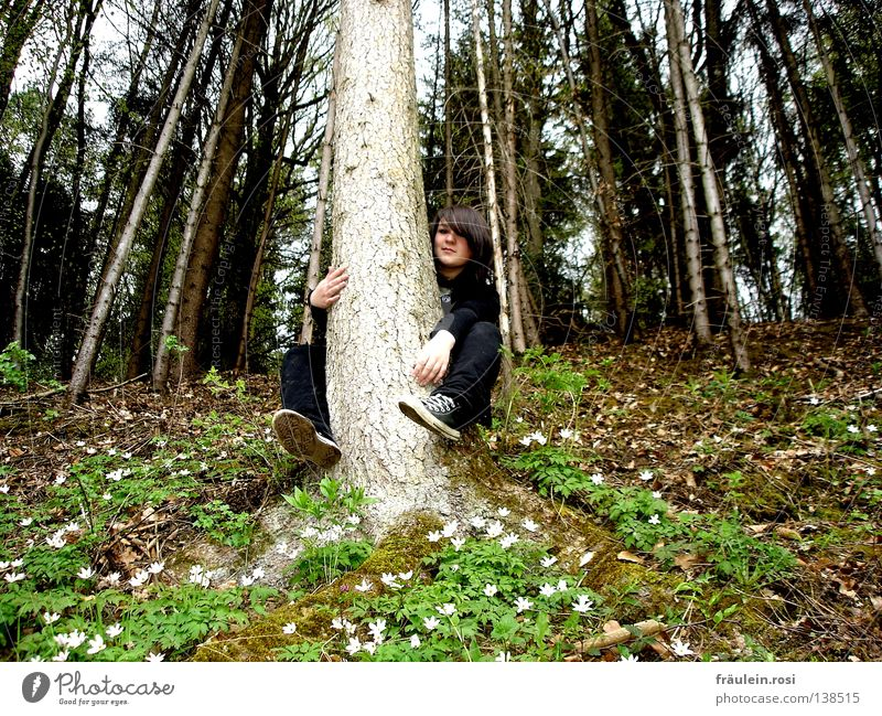 Tree Flower Joy Leaf Clouds Forest Spring Desire Fir tree Cozy Brash Chucks Young woman Woman Easygoing Bad weather