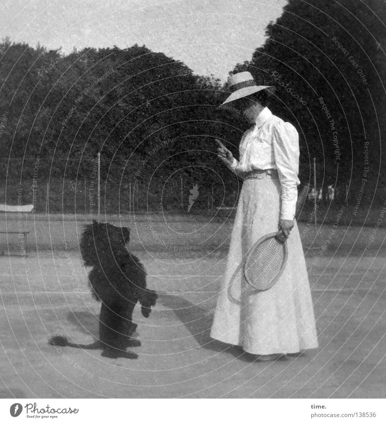 Dog Human being Woman Vacation & Travel Adults Feminine Fashion Power Stand Clothing Might Historic Fence Hat Testing & Control Whimsical