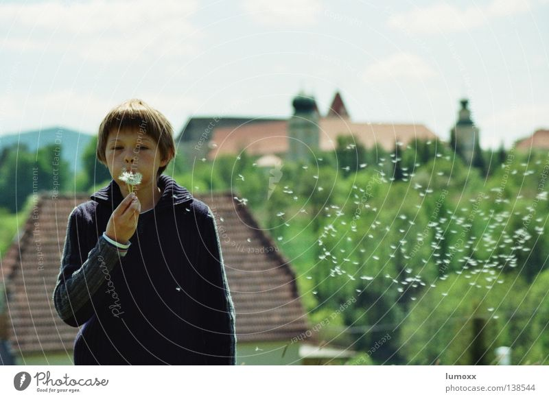 Dandelion II Colour photo Exterior shot Day Long shot Upper body Joy Freedom House (Residential Structure) Child Human being Masculine Boy (child) Infancy 1