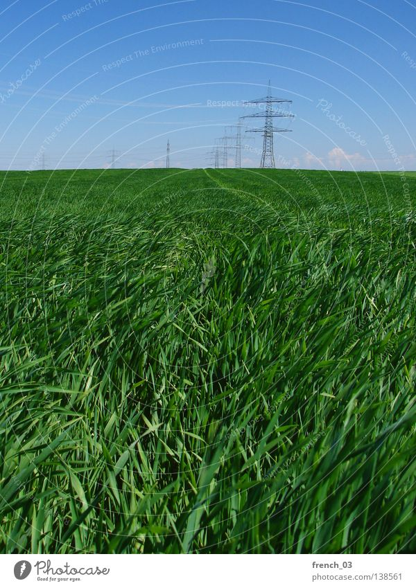 Energy on the fields Sky Nature Blue Green Clouds Far-off places Environment Landscape Freedom Grass Spring Horizon Weather Wind Power Field