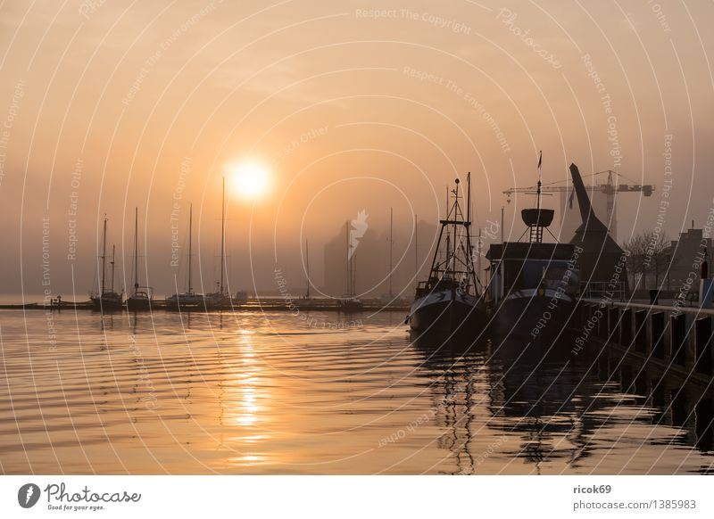 sunrise Relaxation Vacation & Travel Sun Water River Town Harbour Sailboat Sailing ship Watercraft Romance Idyll Nature Calm Tourism Rostock