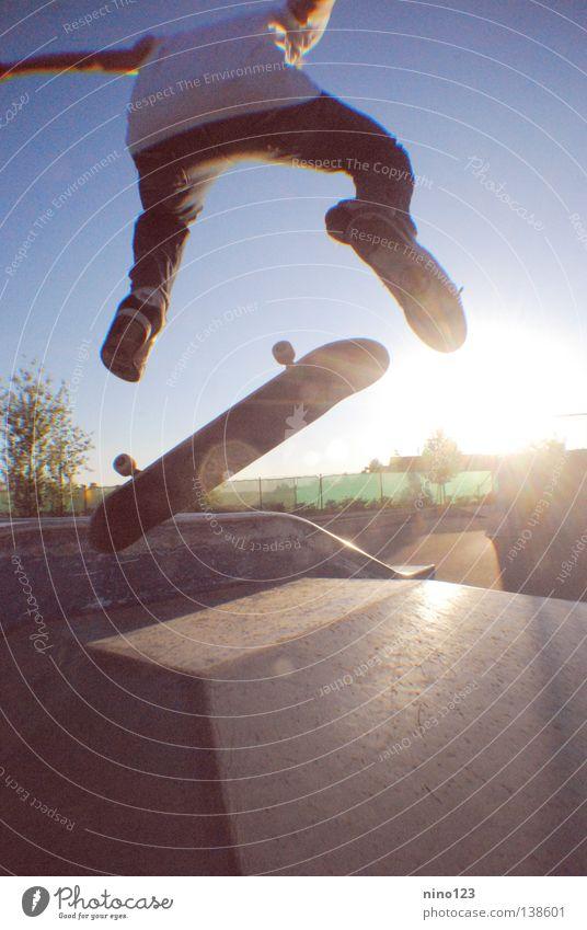 Man Beautiful Sun Blue Street Sports Playing Cool (slang) Simple Leisure and hobbies Skateboarding Salto Trick Funsport Kickflip