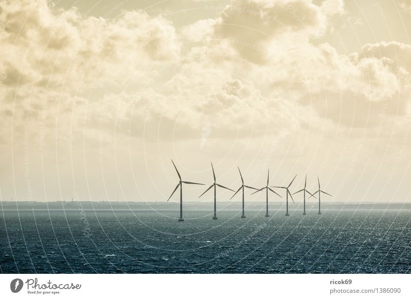 windmills Sun Energy industry Renewable energy Wind energy plant Nature Landscape Clouds Climate Coast Baltic Sea Ocean Sky Colour photo Subdued colour
