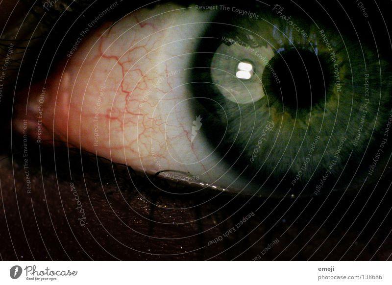 Green Red Eyes Black Dark Lamp Round Near Pain Macro (Extreme close-up) Disgust Vessel Lens Pupil Iris Ignite