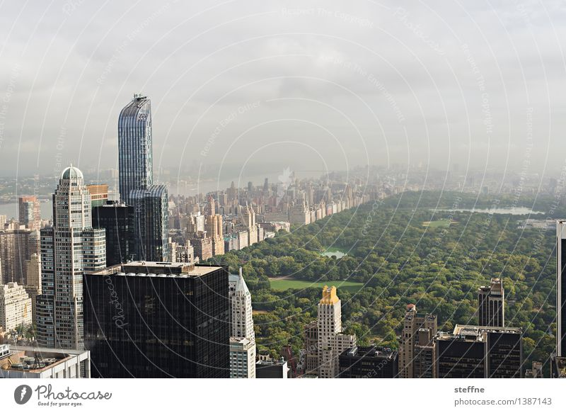 City Freedom City life High-rise Esthetic USA Skyline Landmark Americas Manhattan New York City Central Park