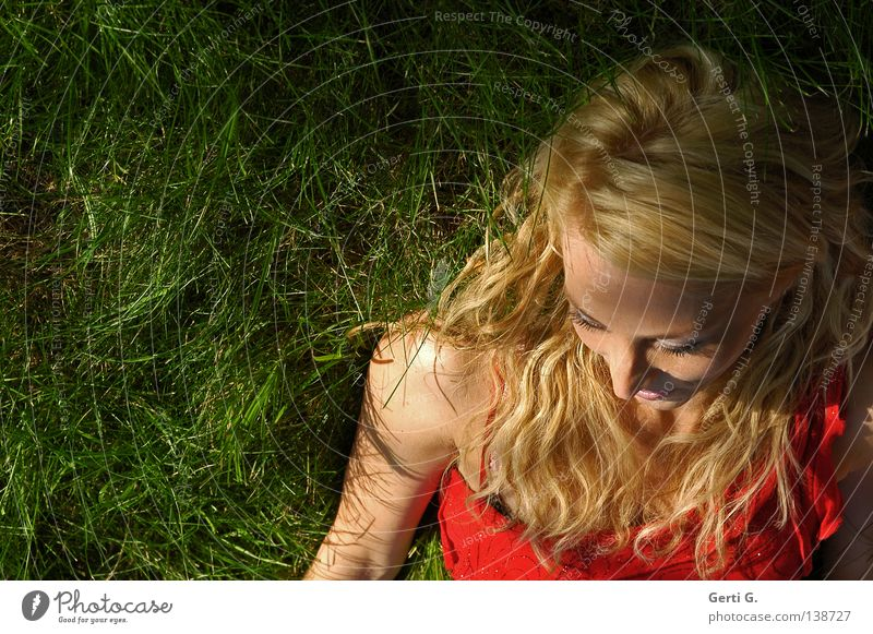 sensual Woman Meadow Grass Long-haired Curly Relaxation Red Dress Beautiful Attractive Delicate Fragile Force Grass green Green Portrait photograph Model Shadow