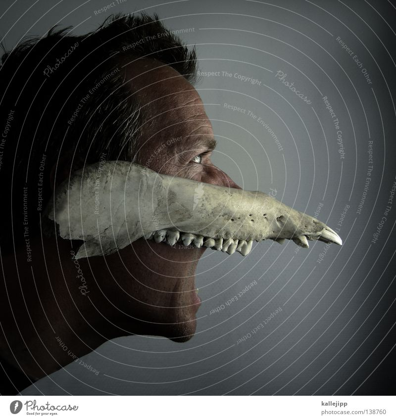 Human being Nature Man Animal Face Fear Wild animal Dance Nose Anger Mask Set of teeth Ghosts & Spectres  Odor Scream God