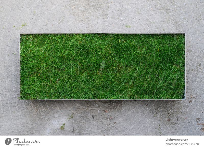 Green Meadow Concrete Lawn Traffic infrastructure Remainder Rectangle Lung Green space