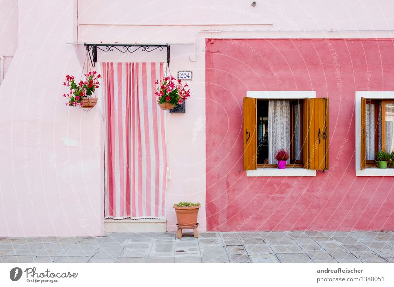 Vacation & Travel Plant Summer House (Residential Structure) Window Wall (building) Wall (barrier) Happy Brown Facade Pink Living or residing Door Trip Italy