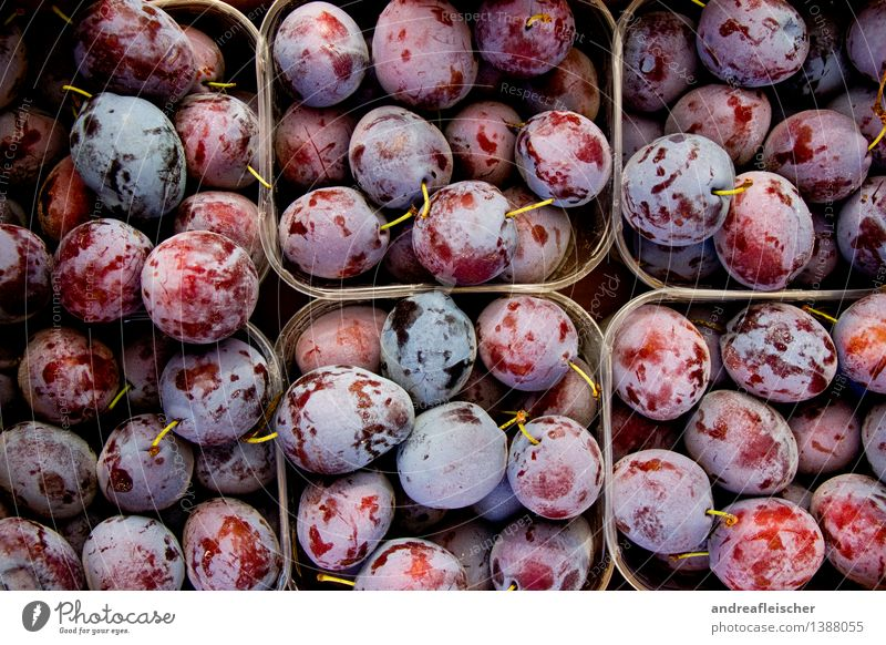 plums Food Fruit Nutrition Organic produce Vegetarian diet Nature Paying Shopping Fitness Authentic Healthy Good Natural Juicy Sour Beautiful Sweet Appetite